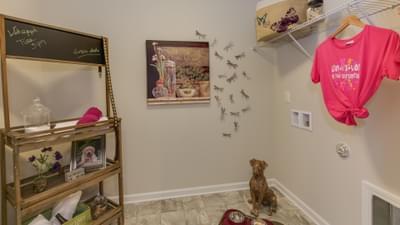 Chesapeake Homes -  The Concerto Basement Laundry Room