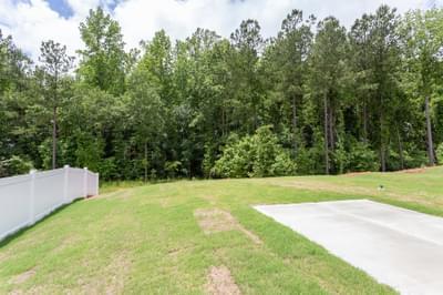Chesapeake Homes -  712 Hackberry Way, Longs, SC 29568 Yard