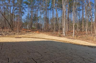 Chesapeake Homes -  Shadow Creek Backyard
