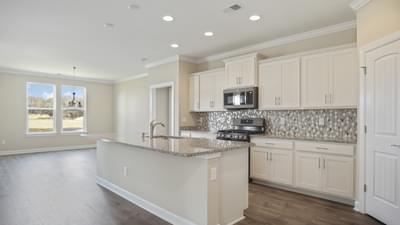 Chesapeake Homes -  748 Hackberry Way, Longs, SC 29568
