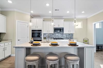 Chesapeake Homes -  291 Goldenrod Circle, Little River, SC 29566 Kitchen