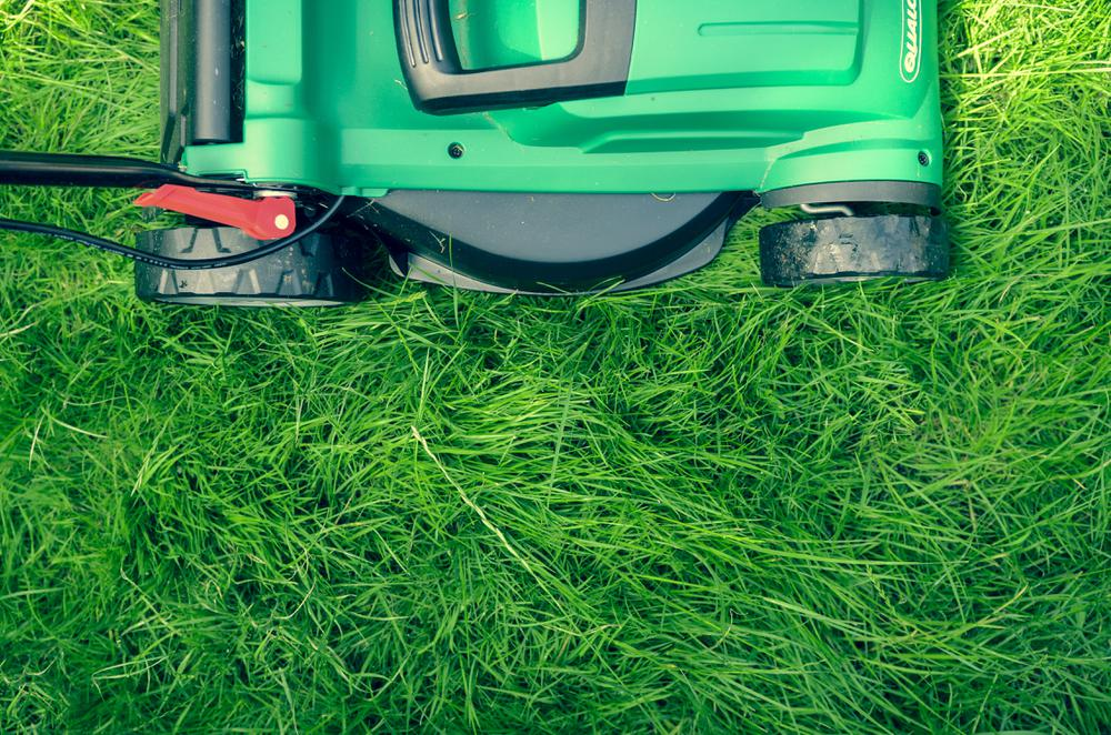 It's Time to Get Your Lawn Care Game On!